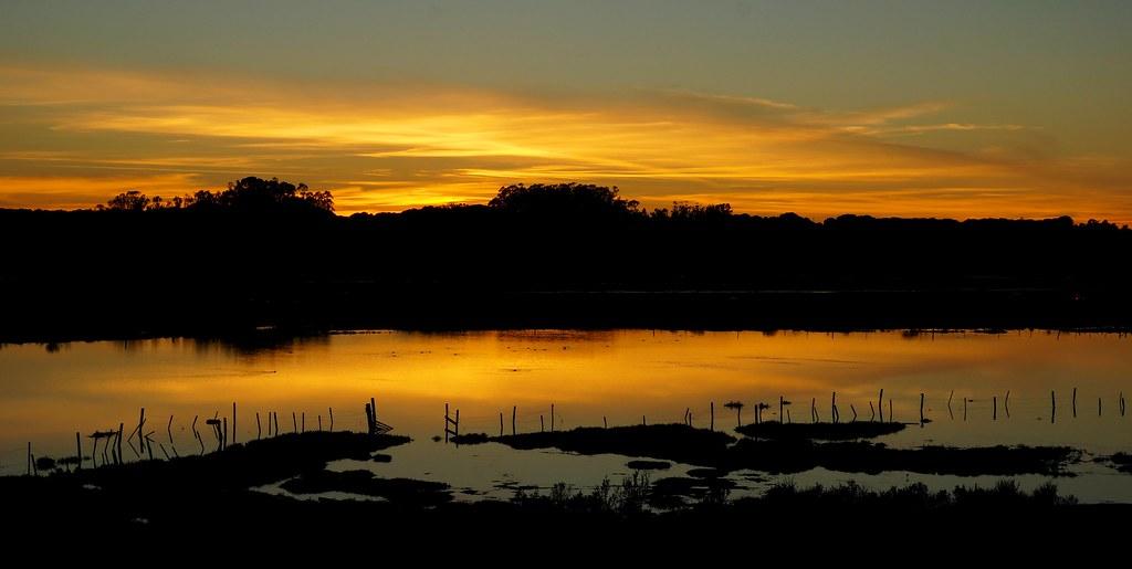 Sunset at Elkhorn Slough