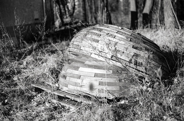 Wood Domes