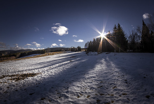 Bohemian forest by Zdenek Papes