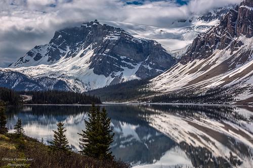 canada alberta banffnationalpark icefieldsparkway bowlake canadianrockies crowfootglacier bowglacier