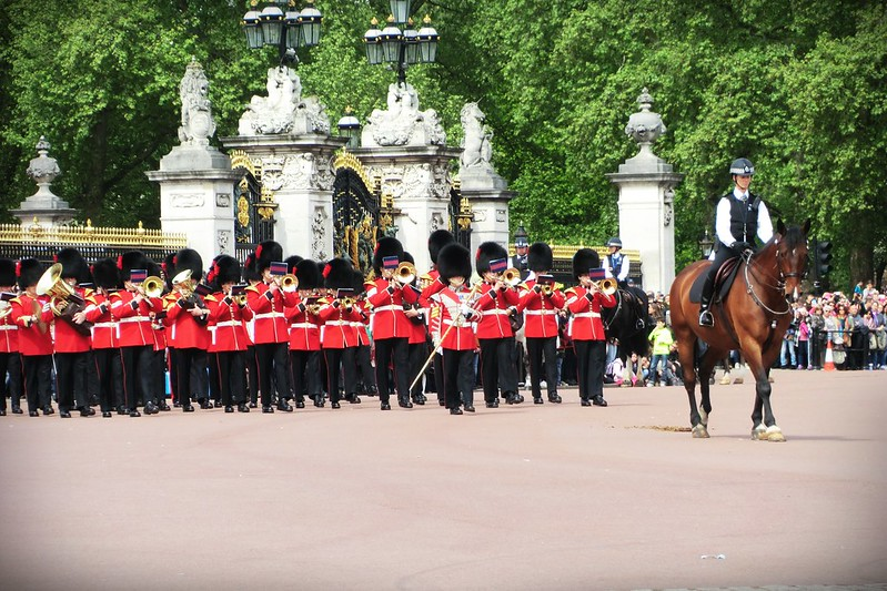 Police Horse leading the Changing of the Guards