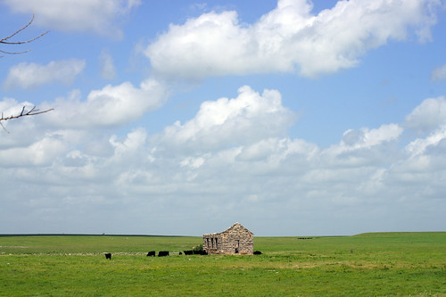 trees clouds scenery day cattle cloudy kansas fields flinthills partlycloudy abandonedchurch abandonedschool sal55200 sal1855 oldrockbuilding sonyslta33