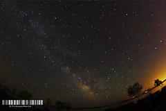 Nebulosa en el Delta del Ebro