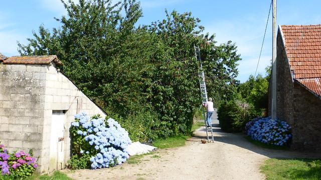 031 Les Planques, Saussemesnil