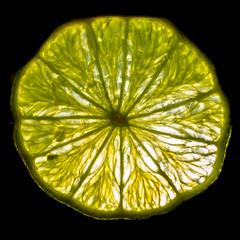 Backlit slice of lime.....