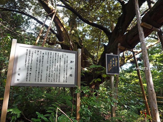 三宅島_054