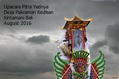 Upacara Pitra Yadnya, Bali 2016