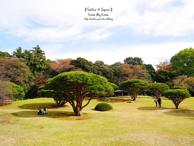 日本東京自由行新宿御苑庭園景點 (37)