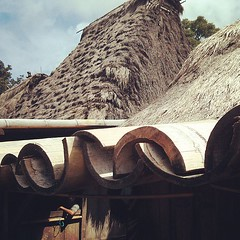 Ingenious way of using #bamboo for roofing / guttering