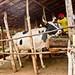 Livestock projects - Burundi