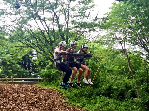 NSLC COMM Ropes Challenge Course