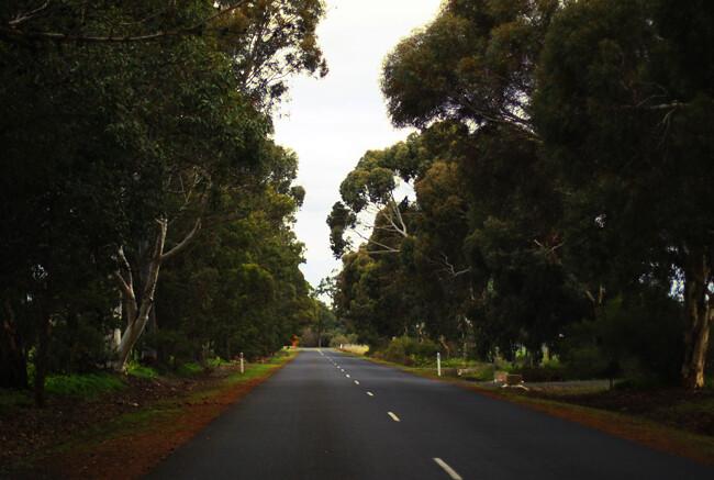 road45