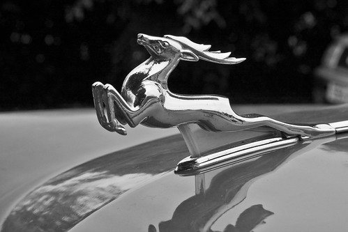 Volga's Bonnet Ornament in Black and White