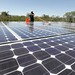 solar panels by Kamili Images