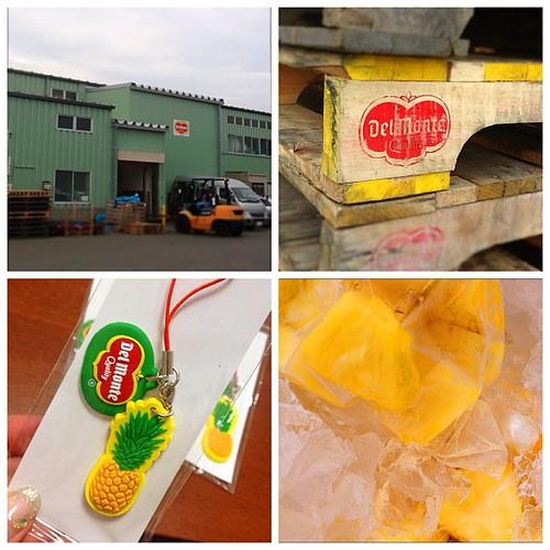 デルモンテのパイナップル加工工場に見学に行って来ました!次のパイナップルエールにこちらのパイナップルを使います。「え?機械加工品を?」と思われた方、まぁ読んで下さい。 http://t.co/rTTPgnFi4e