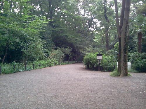 国立科学博物館附属自然教育園 教育管理棟から森の入り口
