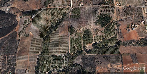part of the site for proposed Lilac Hills Ranch (via Google Earth)
