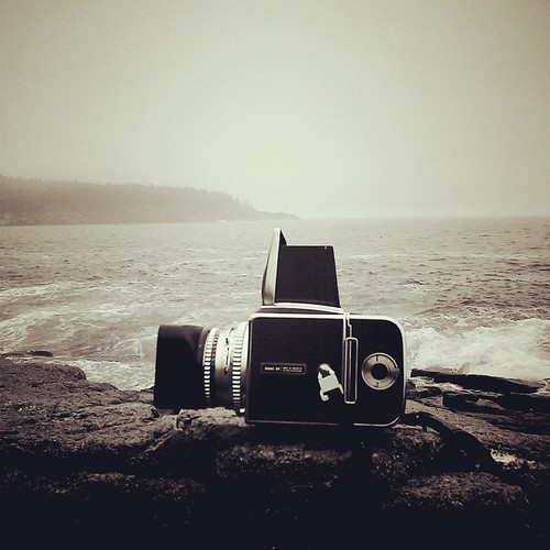 Hasselblad in Fog, Acadia National Park