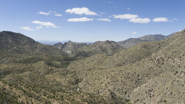 Mount Lemmon, Coronado National Forest