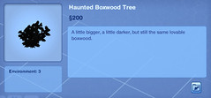 Haunted Boxwood Tree