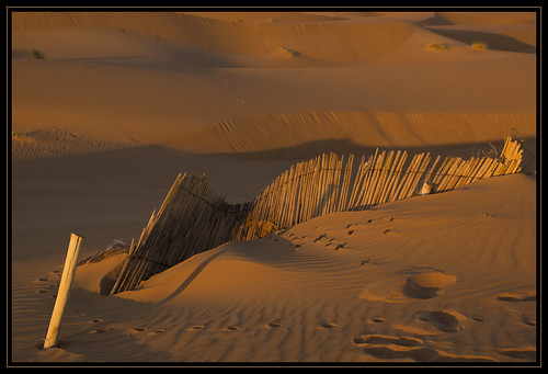 friends sunrise desert alba morocco marocco sanddunes marokko deserto merzouga woestijn ergchebbi zonsopkomst dunedisabbia zandduinen meknèstafilalet theperfectphotographer fotoworkshopnl