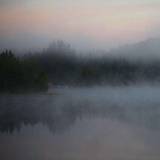 Bain de brume au lever du jour...!!!