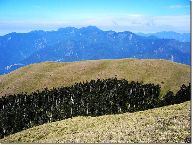 3225峰俯瞰西合歡山 1