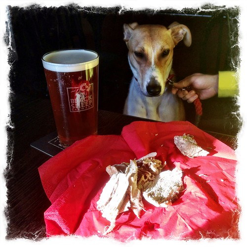 Lurcher and Beer