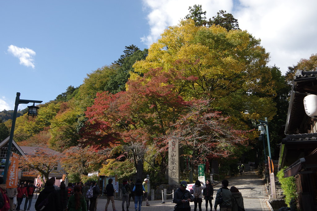 13 Nov 2013 : Mt. Takao photo