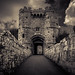 Carisbrooke Castle Gate by Scrufftie