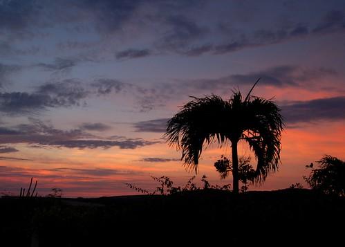 sunset sky vista caribbean bonaire ©allrightsreserved blinkagain