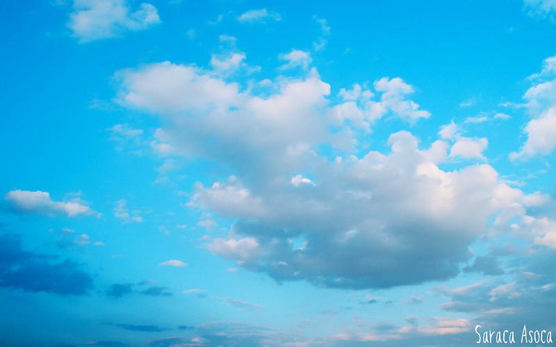 sky-of-love (2)