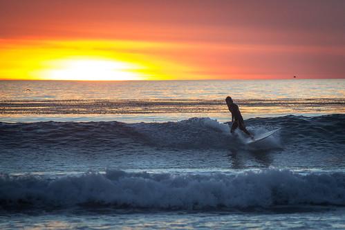 beach surf sandiego californian beachboys swamis