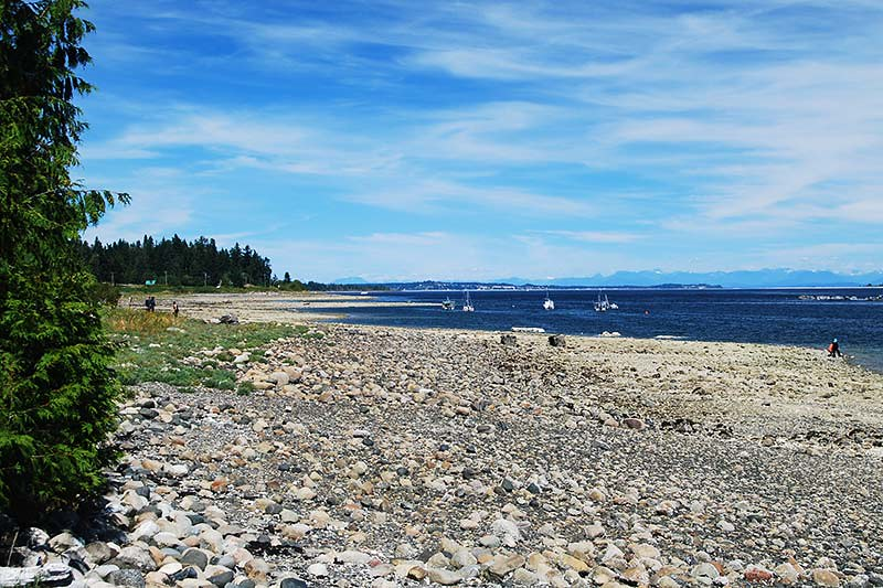Coast between Union Bay and Buckley Bay, Vancouver Island, British Columbia