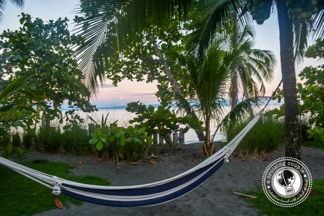 Blue Osa hammock