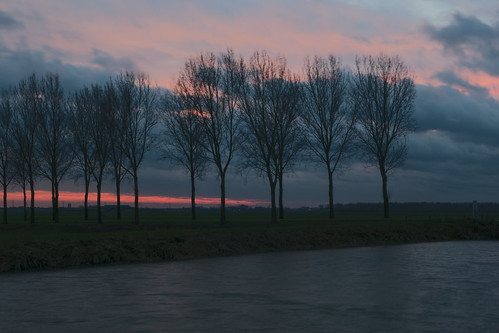 trees sunset zonsondergang bomen afternoon silhouettes windy stormy polder golven winderig namiddag treessilhouettes hertogswetering hethooghhemael polderhethooghhemael luckyorgood winderigenamiddag