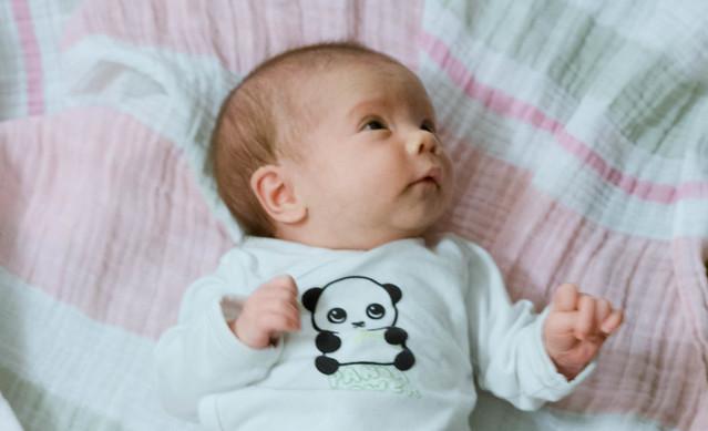 Shiloh on floor in panda onesie-3