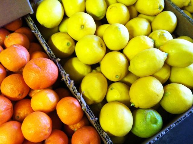 citrus6