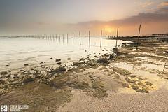 Kuwait - Fintas - Golden Cloud Sunrise Reflection II