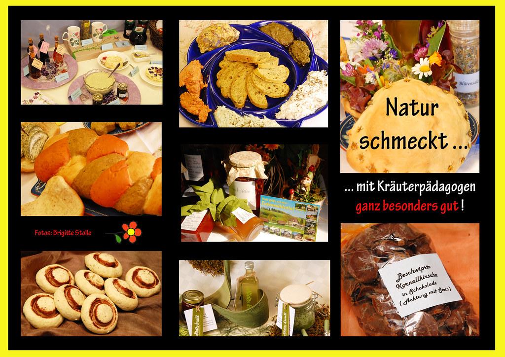 Heimische Kräuter Beeren Blüten Nüsse Rezept Rezepte Ethnobotanik Kräuterpädagoge Kräuterpädagogin Brigitte Stolle Mannheim