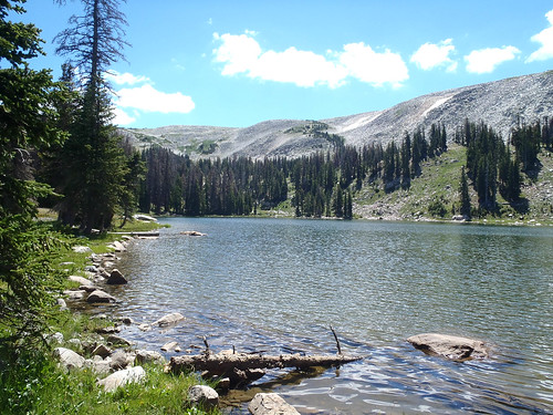 Medicine Bow National Forest Hiking
