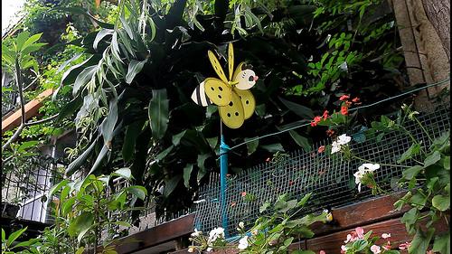 「阿立的家」外牆上的小風車