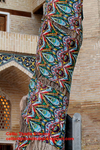 Wrapped tree Bukhara