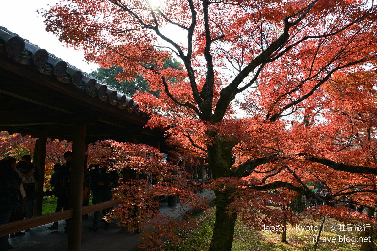 京都 东福寺34