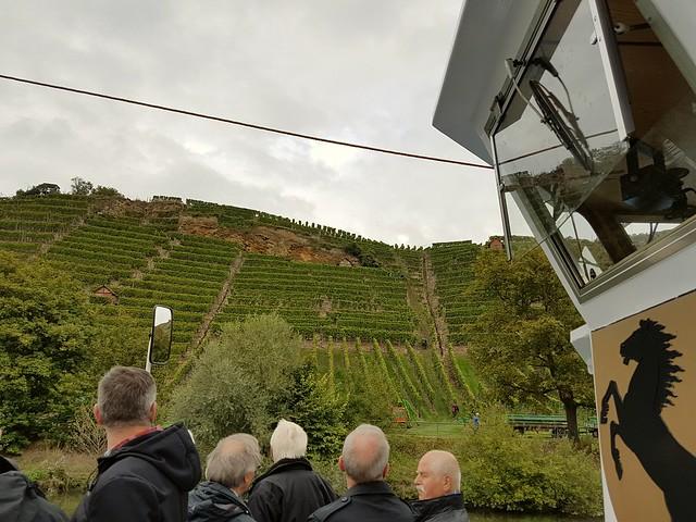 Take a ride on a boat -  grape harvest .MS STUTTGART tuckert nach Hofen. Weinlese. Württemberger Wein.