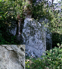 Curvalle.Menhir de Vigardel  (détail).