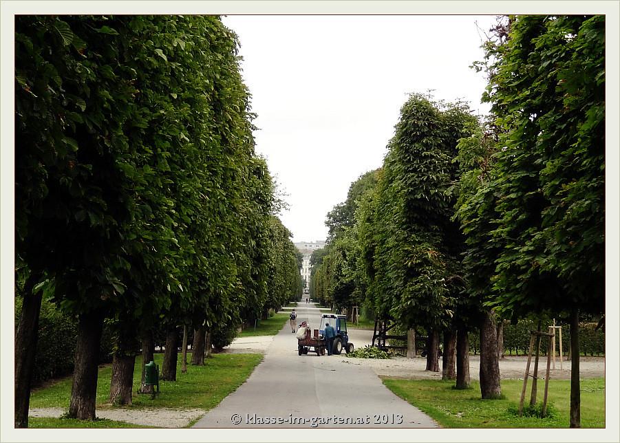 Barocker Heckengarten - der Augarten