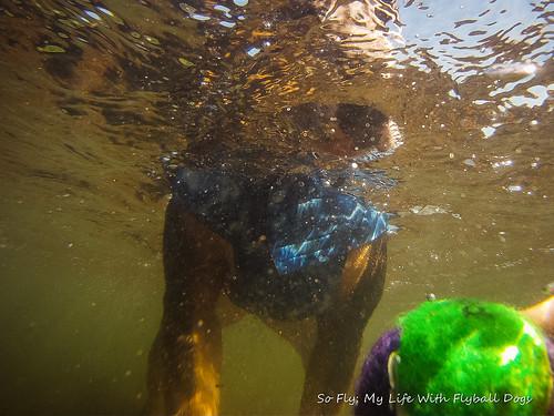 GoPro Under Water-6061