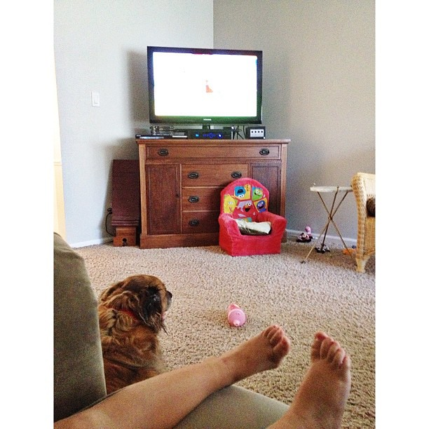 Cartoon watching  #pictapgo_app