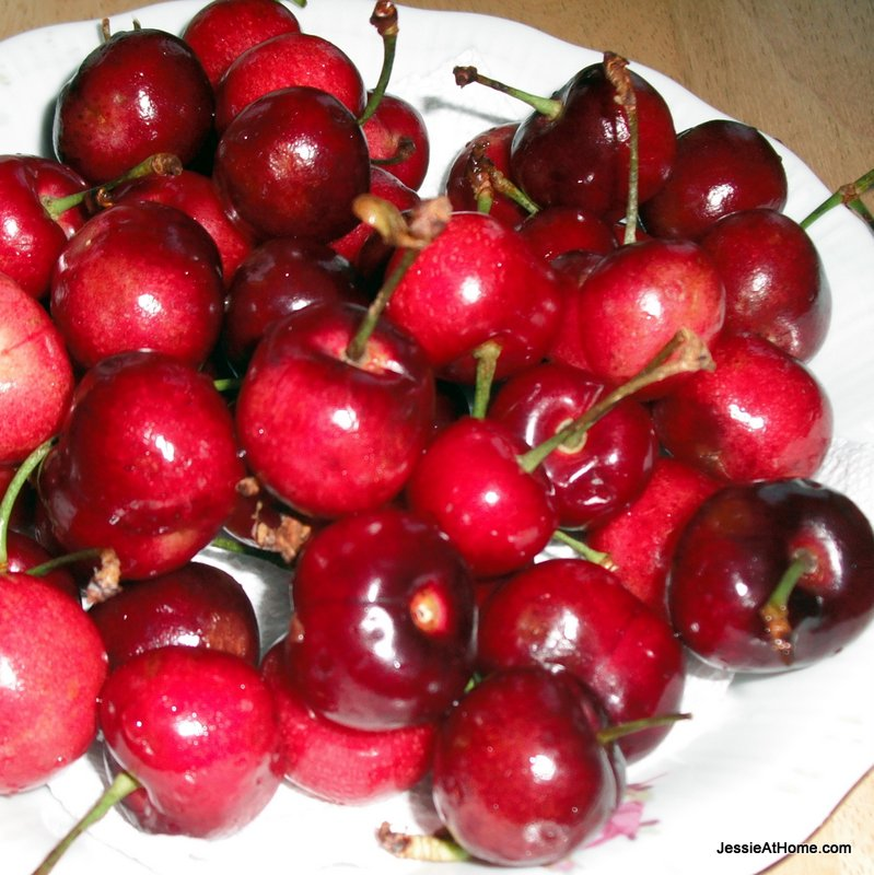 bowl-of-cherries
